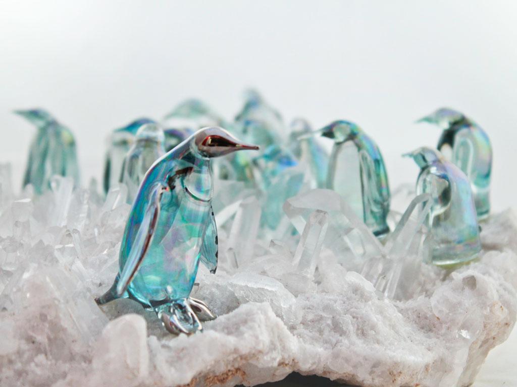 Penguin Anniversary