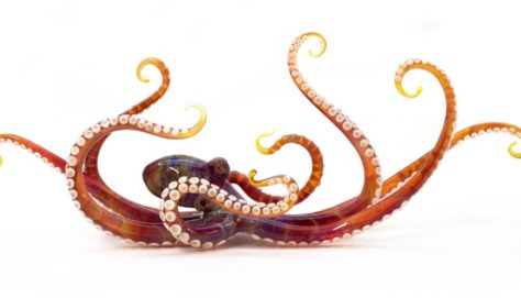 Kraken, approximately 30cm long. Solid clear and coloured borosilicate glass sculpture. Each arm has sucker details of white glass which is individually applied and then domed whilst still hot.