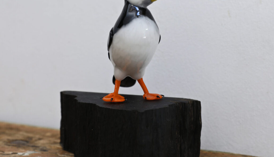 Puffin Stand 6