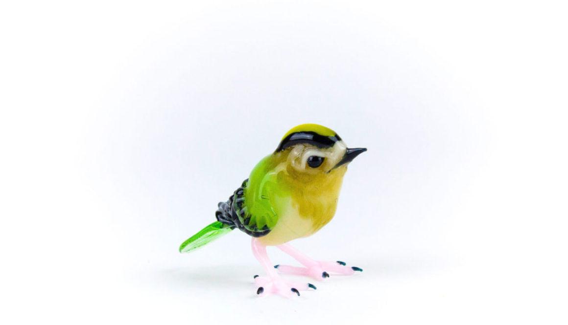 Bird.jpeg