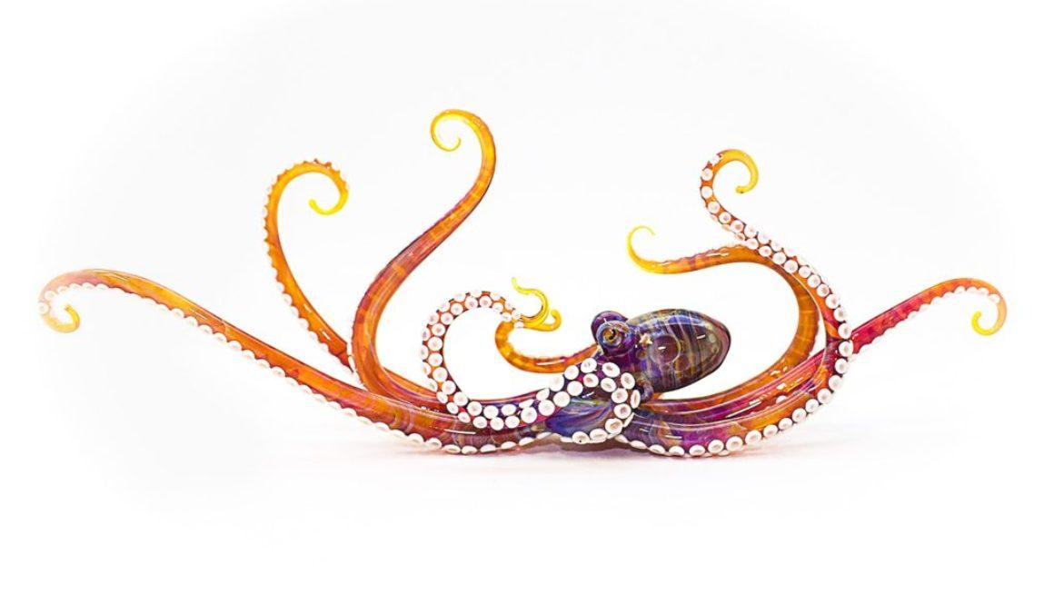 Octopus - Orange